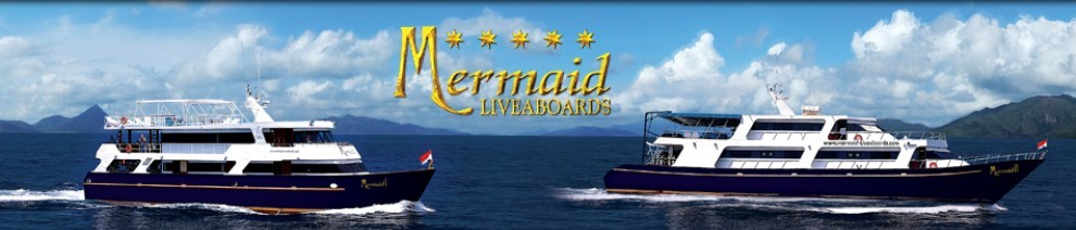 Liveaboard Diving with Mermaid I and Mermaid II Cruises